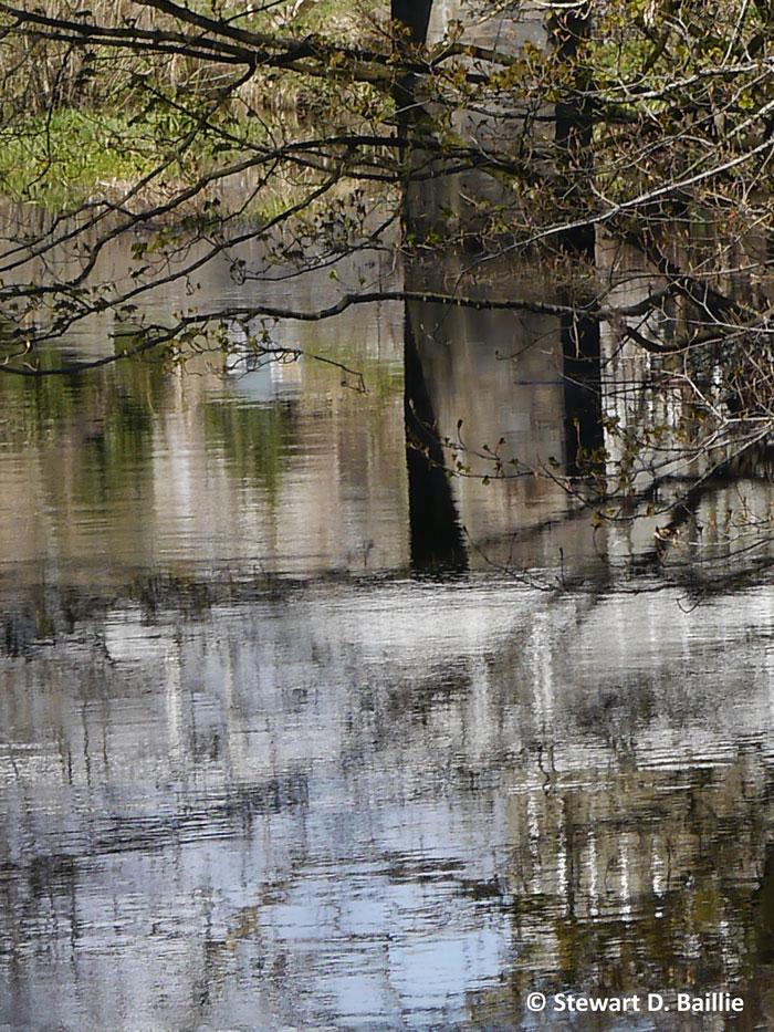 Mill water reflections (© Stewart Baillie)